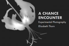 A Chance Encounter – Experimental Photography by Elizabeth Thorn